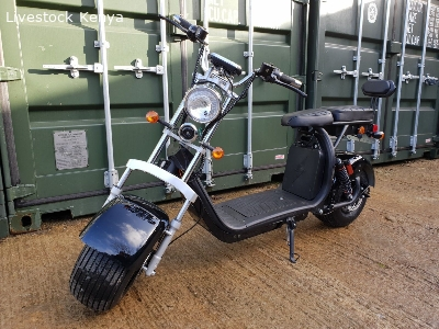 For Sale Electric scooter citycoco 3000W motor with 20ah bat