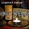 {+27739645035,get rich,financial spells N lady smith,kokstad