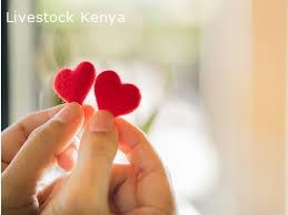 Find true love spells WhatsApp  +27838994923