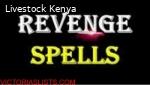 Watsap+27789518085 Instant Revenge Death Spell Dr Ikhile