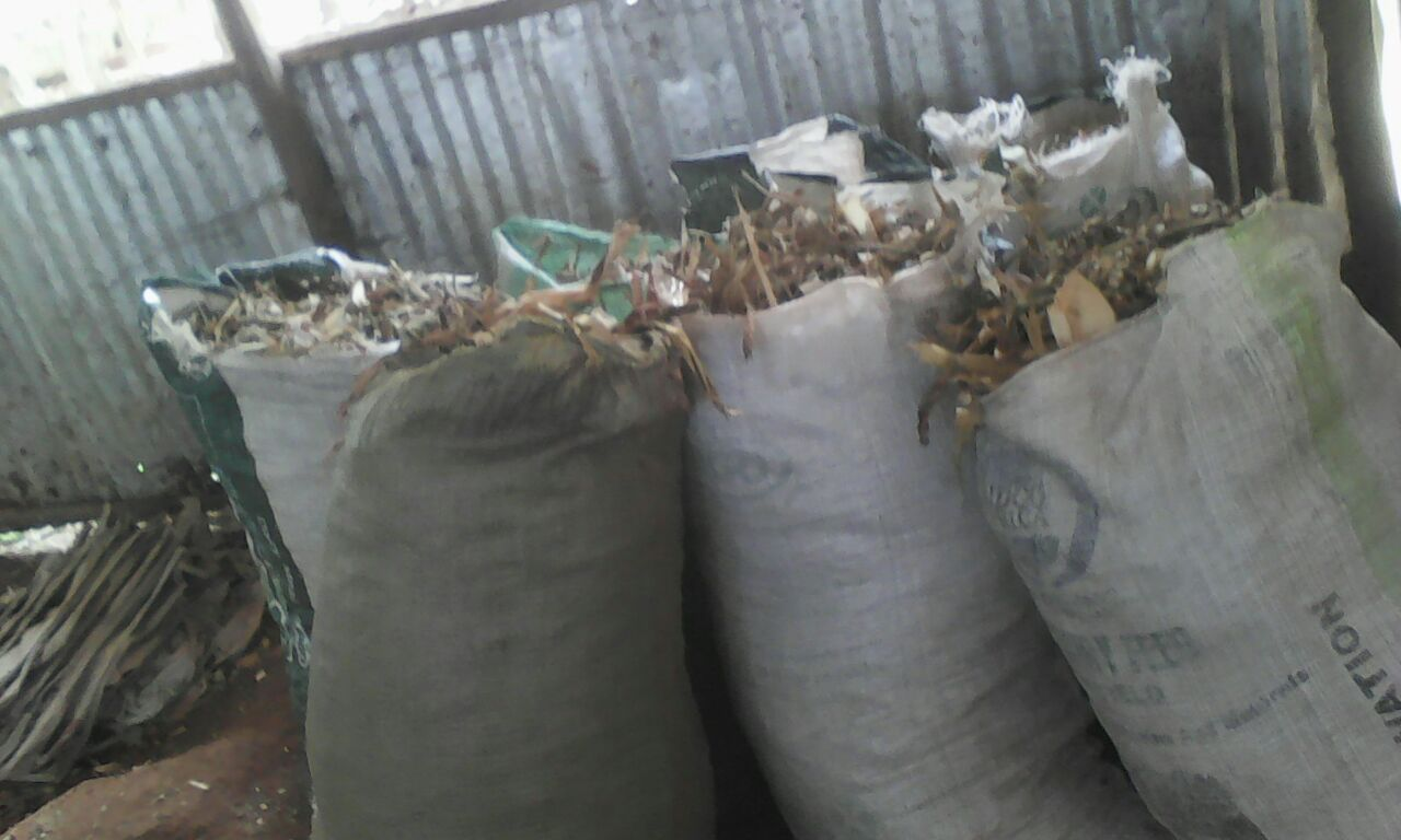 maize stover stored in gunny bags